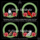 Christmas Owls, Cardinal & Robin Wreath Frames x Four PNG