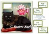 Iris The Black Cat - 8 x 8 Card Topper & Assorted Greetings Tags