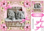 cute kittens in a basket with flowers and bows 8x8