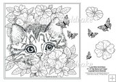 "Tabby Kitten In The Roses 8"" x 8"" Digi Stamp With Decoupage"