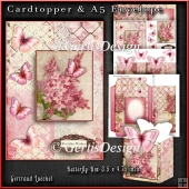 Cardtopper with matching envelope and a little giftbox 1072