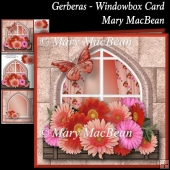 Gerberas Windowbox Card