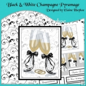 Black & White Champagne Pyramage