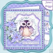 WINTER OWL & POINSETTIA 7.5 Christmas Decoupage & Insert Kit
