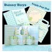 Bunny Boys Triple Pop-Up Card & Gift Bag