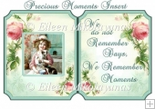 Precious Moments Insert / Topper