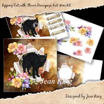 Ripping Cat with Flower Decoupage 8x8 Mini Kit
