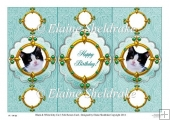 Black & White Kitten Cat - 3 Fold Screen Card