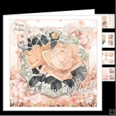 Pink Roses with Black and Silver Foliage Mini kit