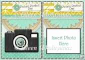 Picture Perfect Day Card Insert