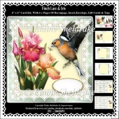 Finch Lace & Iris Flowers 6 x 6 Card Kit With Decoupage etc.