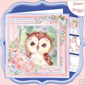 OWL HOW OLD WHO GIVES A HOOT 7.5 Decoupage & Insert Kit