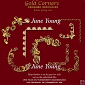 Decorative Gold Corner Embellishments