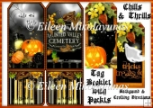 Chills and Thrills Halloween Tag Booklet Greeting Card Set