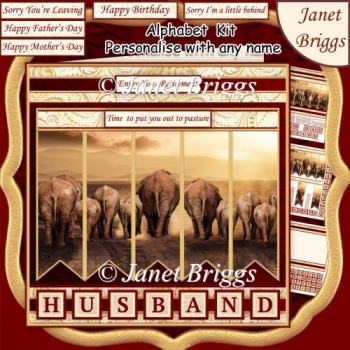 ELEPHANTS 7.5 Alphabet and Age Quick Card Kit Create Any Name