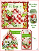 Home Grown Goodness Strawberry Birdhouse Embellishment Set
