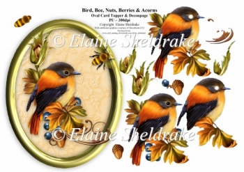 Bird, Bee, Nuts, Berries & Acorns - 7 x 5 Oval Decoupage Topper