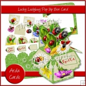 Lucky Ladybug Pop Up Box Card