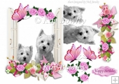 cute westies looking out the window with flowers & butterflies
