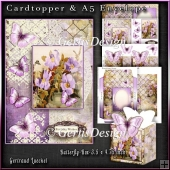 Cardtopper with matching envelope and a little giftbox 1073
