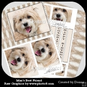 Man's Best Friend Pyramage Card Front