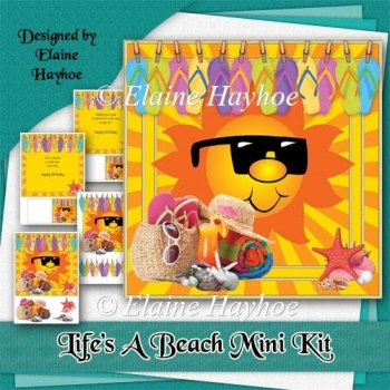 Life's A Beach Birthday Mini Kit
