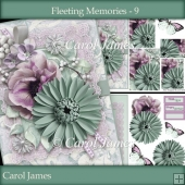 Minikit - Fleeting Memories - 9