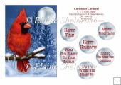 Christmas Cardinal - 5 x 7 Card Topper With Assorted Greetings