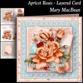 Apricot Roses Layered Card
