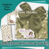 Holly Parcel Christmas Card Kit
