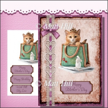 Kitty in a Bag Card Front & Elements
