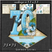 Vintage Easel 70th Birthday Card Kit 1180