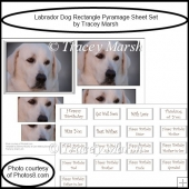 Labrador Dog Rectangle Pyramage Sheet Set