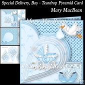 Special Delivery, Boy - Teardrop Pyramid Card