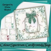 Colour Spectrum Blank Cardfronts Tags and Bows