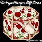 Vintage Hexagon Gift Box 6