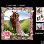 Beautiful Horse Lady Mini Kit