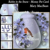 Robin in the Snow - Money Pot Card