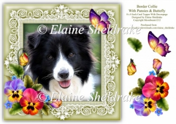 Border Collie Puppy Dog 8 x 8 Card Topper With Pansy Decoupage