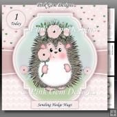 Hedgy Hedgehog Mini Kit With Ages 1 to 8 Yrs