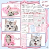 KITTENS 2020 UK Easy Fold Purse Calendars