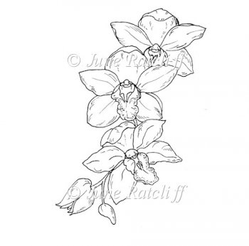 Orchid Line Drawings http://www.card-making-downloads.com/index.php?main_page=product_info&cPath=156&products_id=8657