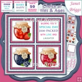 WELL PRESERVED JAM SQUARES 7.5 Quick Layer Card & Ages Kit