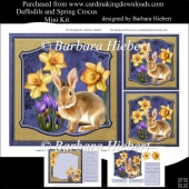 Daffodils and Spring Crocus Flowers Mini Kit