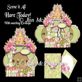 SCENE IT ALL HARE TODAY! CARD KIT
