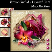 Exotic Orchid - Layered Card