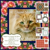 Ginger Cat Among The Roses Card Kit