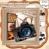 CAMERA SNAPSHOTS ON SAFARI 7.5 Decoupage & Insert Mini Kit