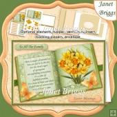 EASTER DAFFODILS BOOK with Verse A5 Decoupage Envelope Insert
