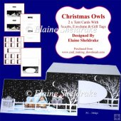 Christmas Owls 2 x Tent Cards Kit With Inserts, Envelope & Tags